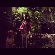 [FOTOS]Objetos de Seungri exhibidos durante sufanmeeting
